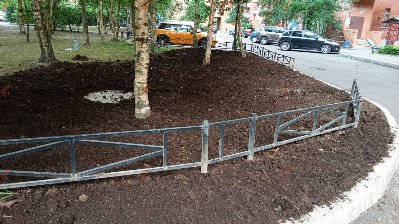 посевной газон савушкина фото 1