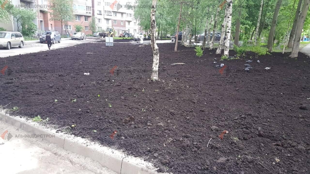 посевной газон савушкина фото 15