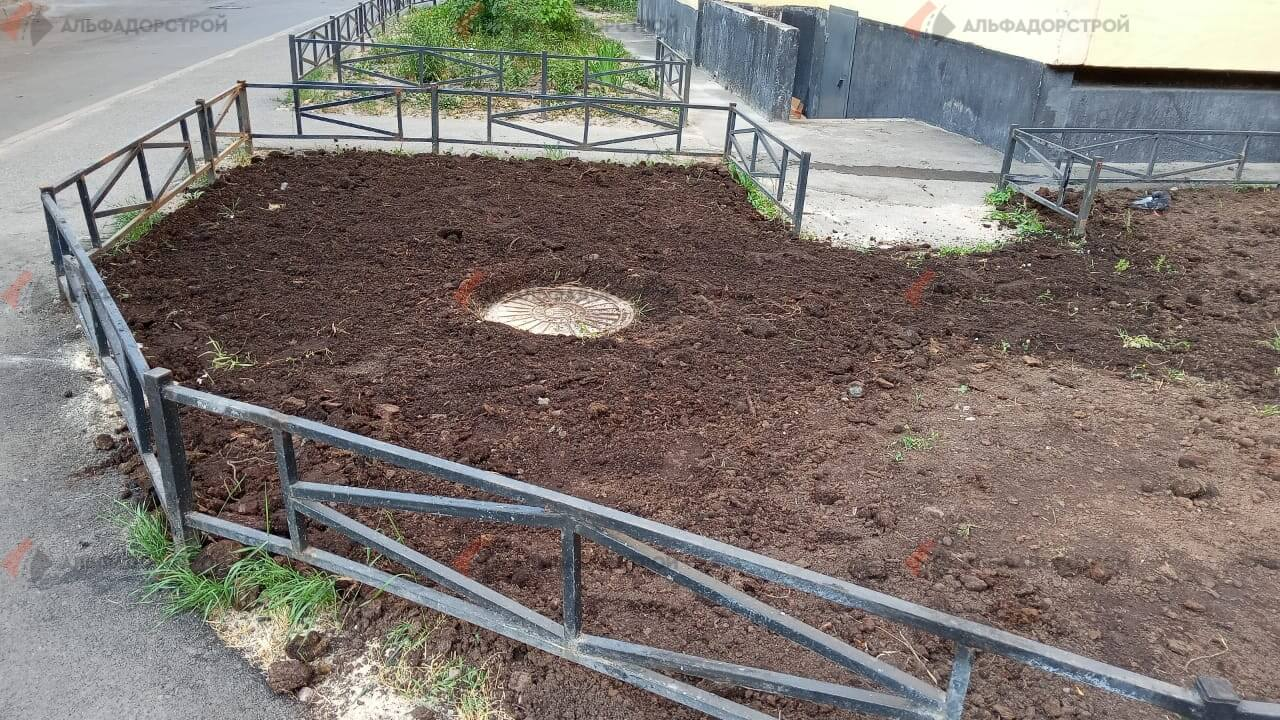 посевной газон савушкина фото 4
